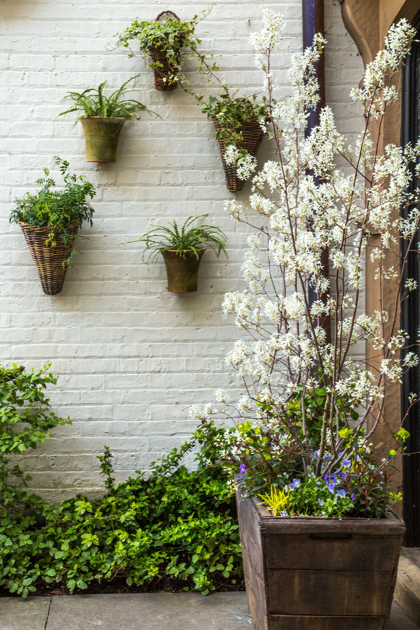 Hot Home Trend: Vertical Gardens